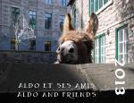 Calendar featuring donkey who lives in old Quebec City as part of local Anglican Cathedral's green ministry endeavor.